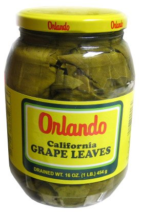 Orlando Grape Leaves